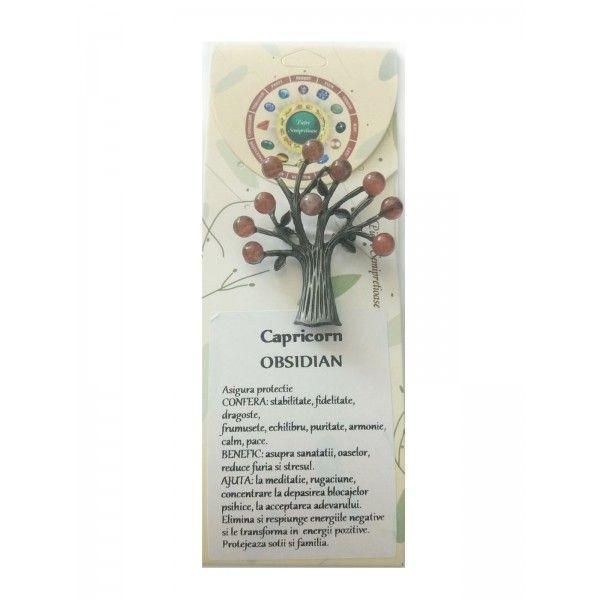 Brosa piatra norocoasa capricorn obdisian