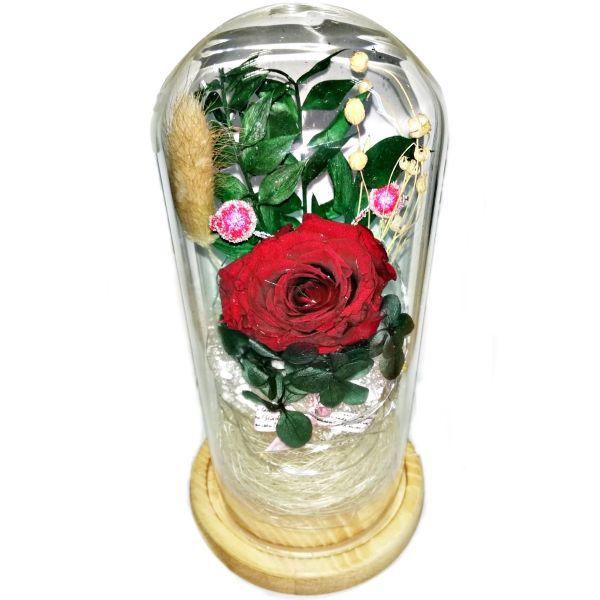 Trandafir natural criogenat rosu cu lumina  C05-01